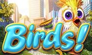 laromere-casino-bonus-jeu-birds