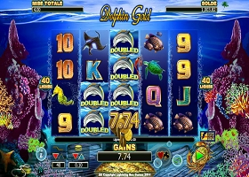 dolphin-gold-feature-wild