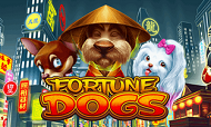 fortune-dogs-habanero