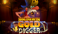 hold-and-win-gold-digger