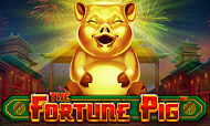 the-fortune-pig