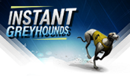 instant-greyhounds