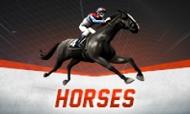 virtual-horses