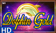 dolphin-gold-hq