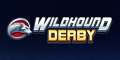 wildhound-derby-play-n-go