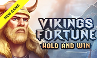 vikings-fortune-playson