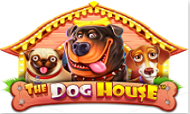 the-dog-house