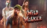 wild-waker