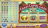 crazy-camel-cash