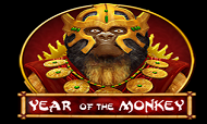 year-of-the-monkey-spinomenal