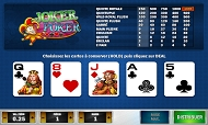 joker-poker-multihand-play-n-go